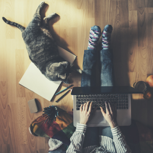 person working from home with cat and laptop