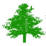 Avon Needs Trees