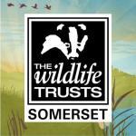 Somerset Wildlife Trust