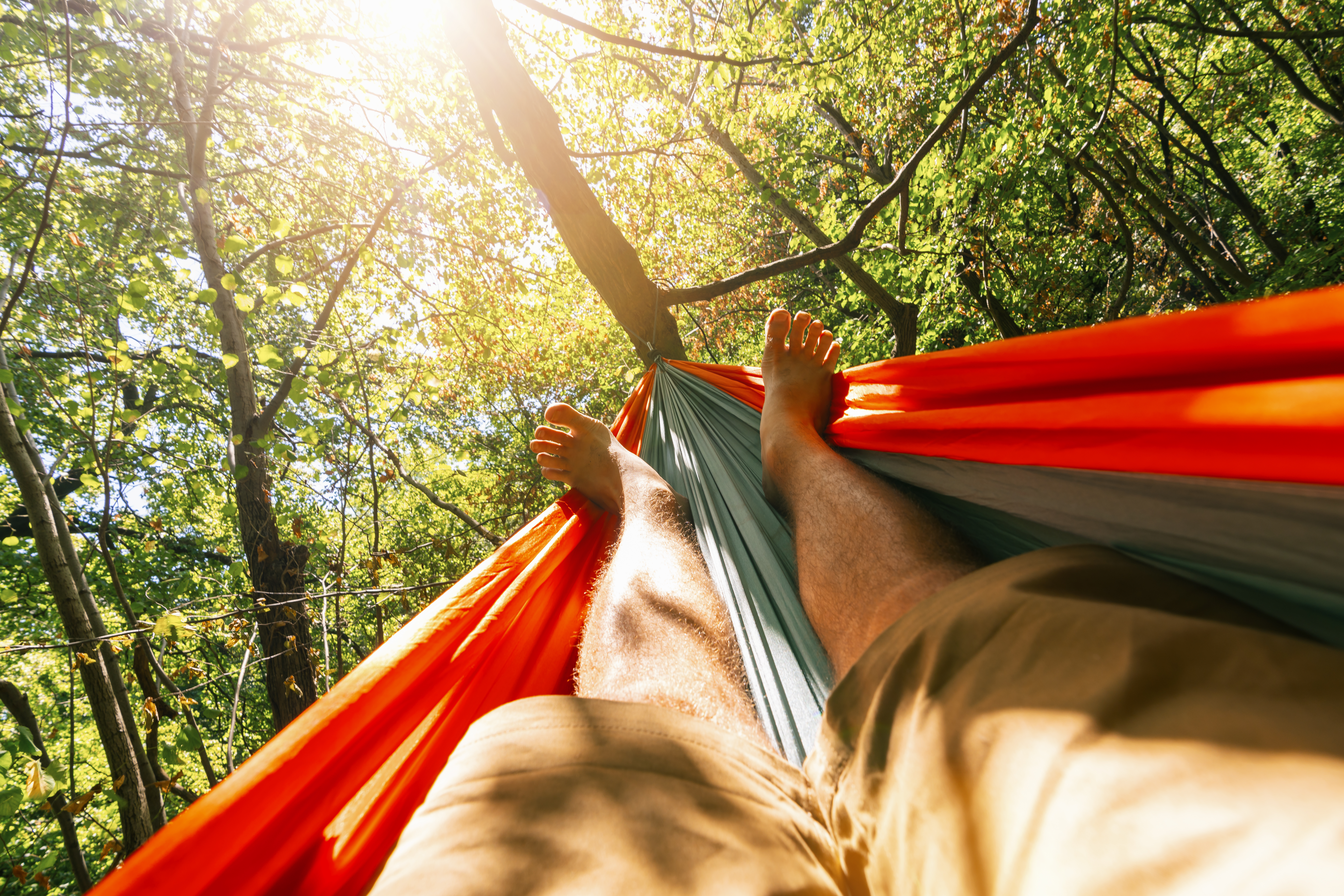 man relaxing on a hammock in the woods