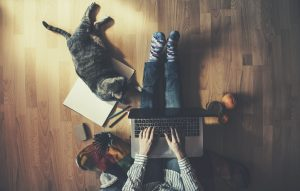 working remotely with cat and latptop